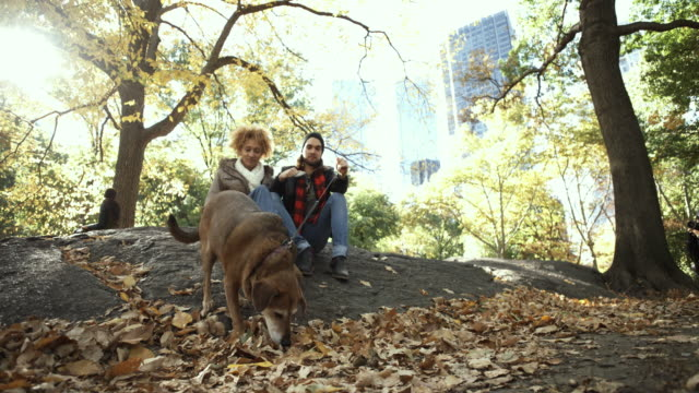 4K Montage - Young couple and Dog in Central Park New York Selfie