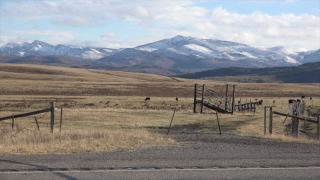 montana mountains and plains with fence.mov - great plains stock videos & royalty-free footage