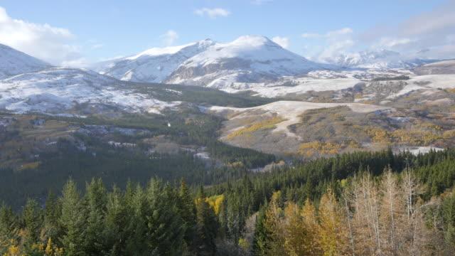 montana view toward glacier park mountains - aspen tree stock videos & royalty-free footage