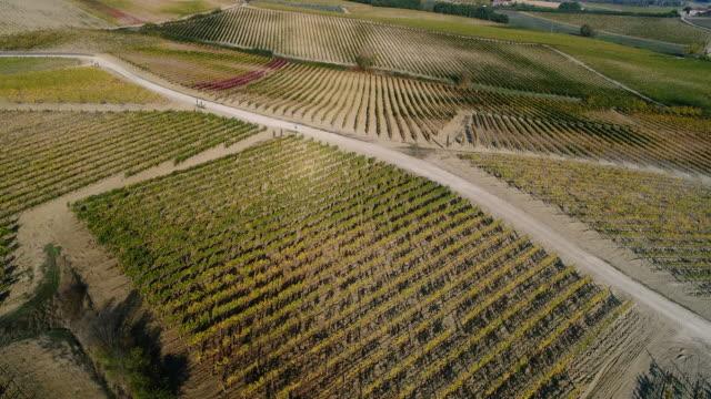 montepulciano wine region, tuscany, italy - montepulciano stock videos & royalty-free footage