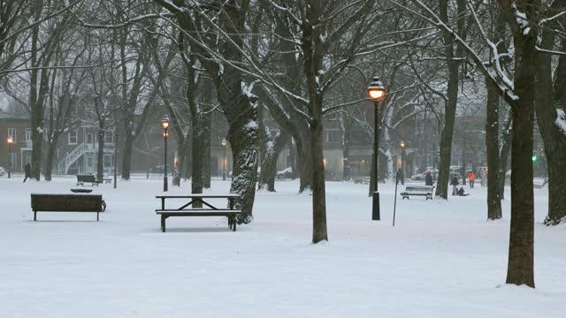 vidéos et rushes de parc public de montréal au crépuscule pendant une tempête de neige - table de pique nique