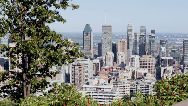 montreal, quebec cityscape view from mount royal park belvedere - montreal video stock e b–roll