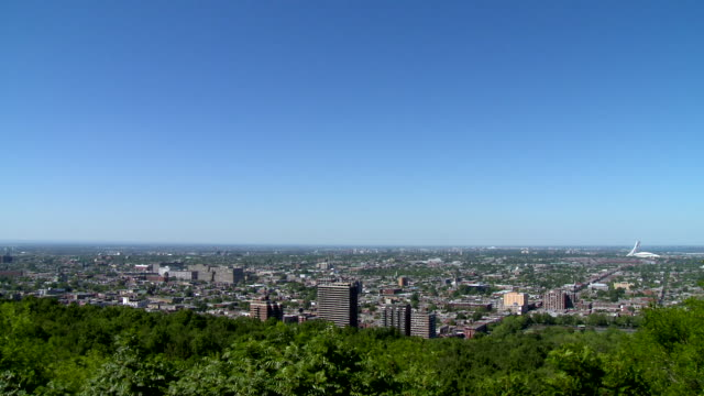 montreal seen from park - sunny stock videos & royalty-free footage
