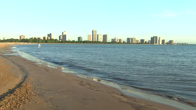 montrose beach shore wide at montrose beach on july 23 2013 in chicago illinois - seeufer stock-videos und b-roll-filmmaterial
