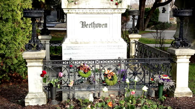 monument of beethoven - austria stock videos and b-roll footage