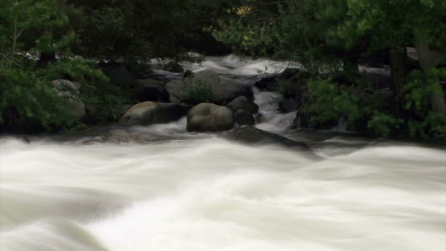 a moody river streaks and floats. - digital enhancement stock videos & royalty-free footage