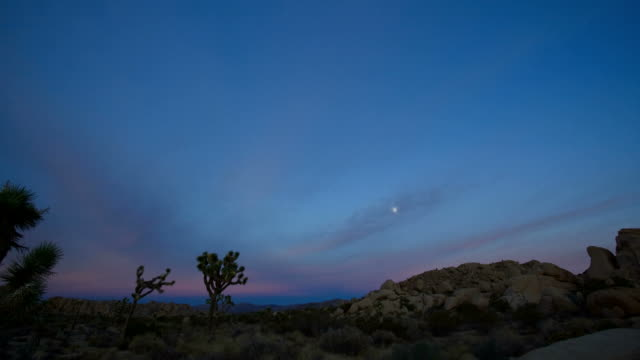 t/l, ws, pan, moody sky above desert landscape, day to night, joshua tree national park, california, usa - california sunset stock videos & royalty-free footage