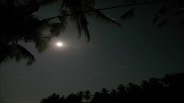 moon and clouds in ubud district / bali, indonesia - ubud district stock videos & royalty-free footage