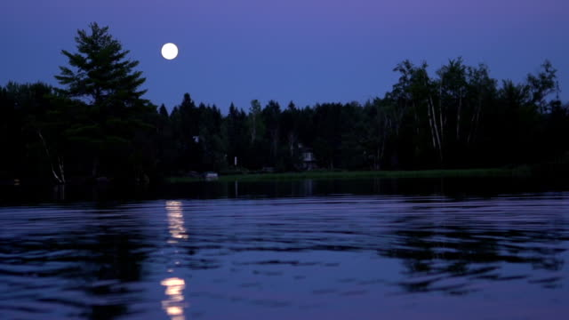 Moon and forest reflecting on lake