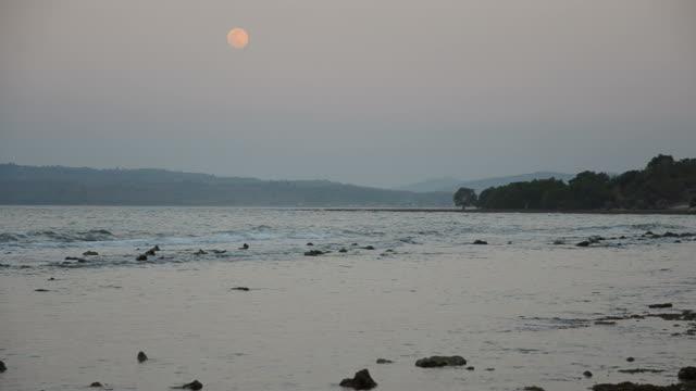vidéos et rushes de lune et la marée après le coucher du soleil - marée