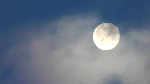 moon - full moon - full moon stock videos & royalty-free footage