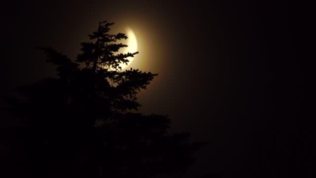 moon in kunashir island (kuril islands) - information equipment stock videos & royalty-free footage