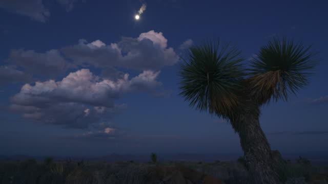 moon over landscape in big bend national park - 40 sekunder eller längre bildbanksvideor och videomaterial från bakom kulisserna