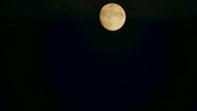 moon rising on a clear sky, time lapse. - full moon stock videos & royalty-free footage