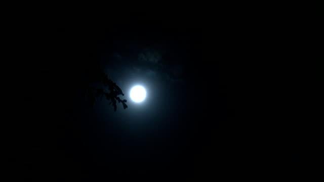 vídeos y material grabado en eventos de stock de moon time lapse detrás de las nubes/pine tree hd en segundo plano - vampiro