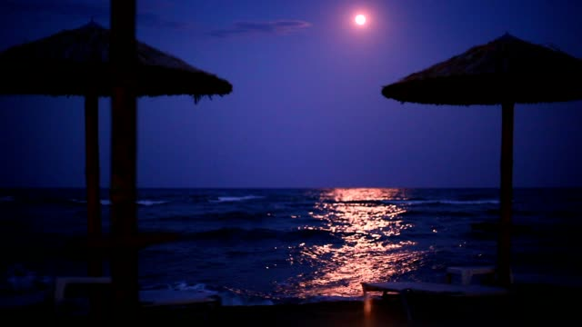 moonlight at the beach - full moon stock videos & royalty-free footage