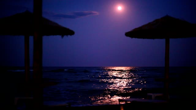 Moonlight At The Beach
