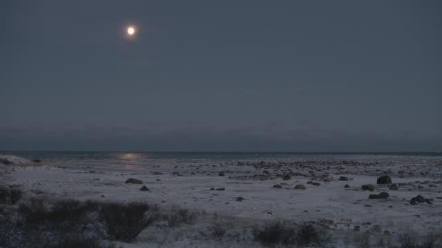 moonlight reflected on sea, canada - polarklimat bildbanksvideor och videomaterial från bakom kulisserna