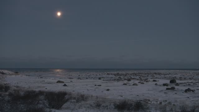 moonlight reflected on sea, canada - マニトバ州点の映像素材/bロール