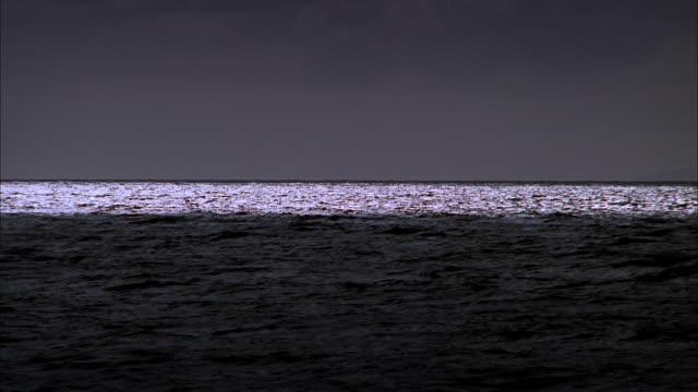 Moonlight reflecting on ocean at night, Maui Available in HD.