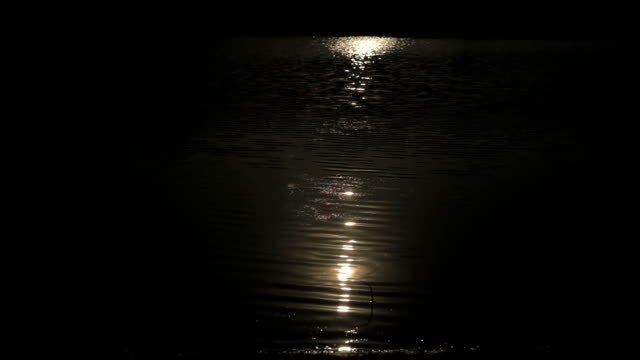 moonlight reflection on river water surface - real time stock videos & royalty-free footage