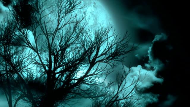 moonlit night - cirrocumulus stock videos & royalty-free footage