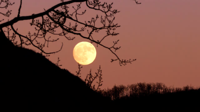 moonrise time lapse at sunset - full moon stock videos & royalty-free footage