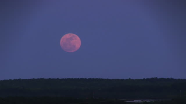 moonrise - full moon stock videos & royalty-free footage