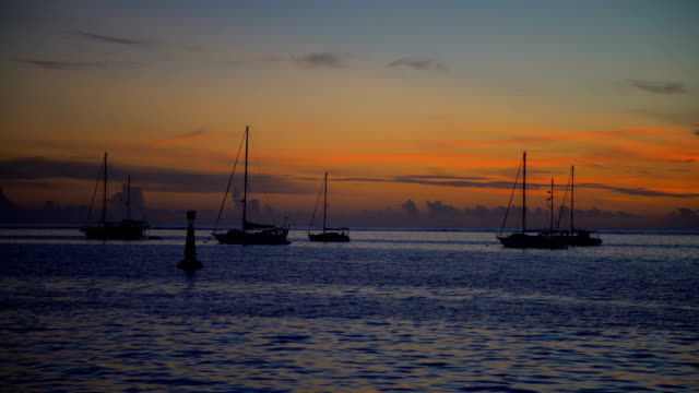 moorea island from tahiti at sunset south pacific - tahiti video stock e b–roll