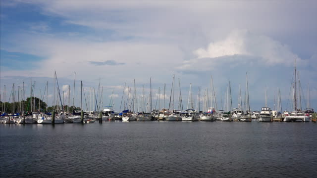 Moored Sailboats in Bay in St Petersburg, Florida