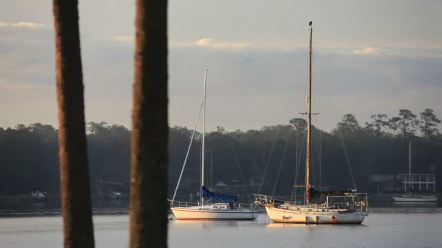 stockvideo's en b-roll-footage met moored sailboats - voor anker gaan