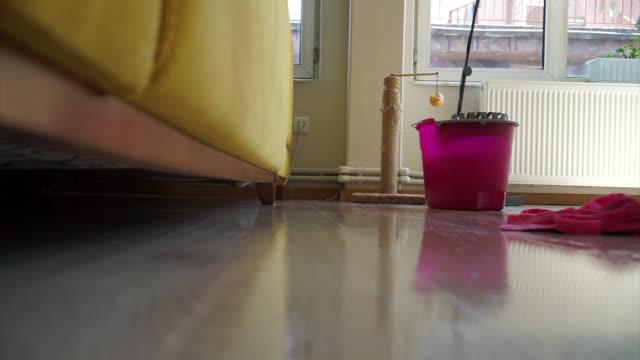 vídeos de stock, filmes e b-roll de limpando o piso de madeira - arrumado