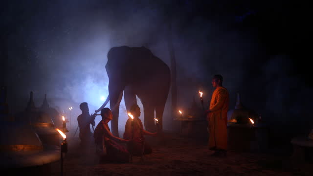 mor prakam chang and villagers join the ritual of beliefs about elephants and ancestors. it is a long tradition and belief of people and elephants. - 王点の映像素材/bロール