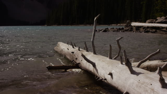 moraine lake, alberta canada - valley of the ten peaks stock videos and b-roll footage