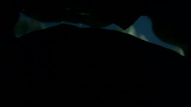 a moray eel slides into a dark underwater hiding place. - moray eel stock videos & royalty-free footage