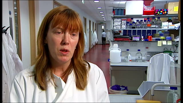 stockvideo's en b-roll-footage met more swine flu cases diagnosed in england / work underway on super vaccine; dr sarah gilbert interview sot - varkensgriep