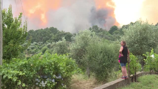 more than 1000 firefighters in portugal were still battling to control the flames which broke out in the central pedrogao grande region at the... - leiria district stock videos & royalty-free footage