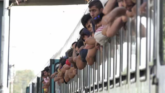 more than 17 thousand people have entered croatia over the past three days -- with the majority crossing into the country from serbia. authorities... - serbia stock-videos und b-roll-filmmaterial