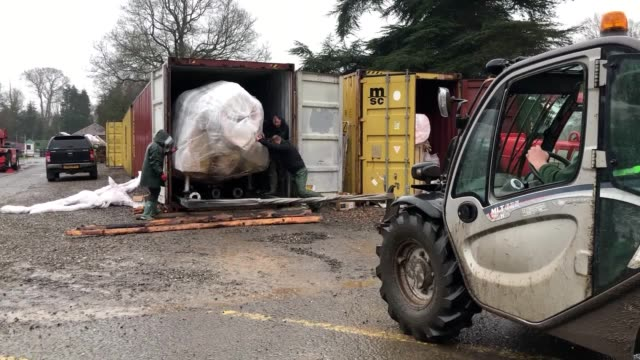 more than 20 lifesize animated dinosaurs have arrived at a safari park to form a new permanent exhibition at blair drummond safari park the models... - animation stock videos & royalty-free footage