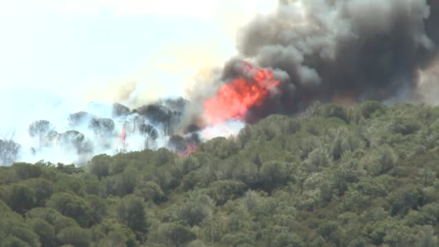 stockvideo's en b-roll-footage met more than 3 000 hectares had gone up in smoke and 15 policemen and four firemen were injured as wildfires continue to ravage the south of france - var