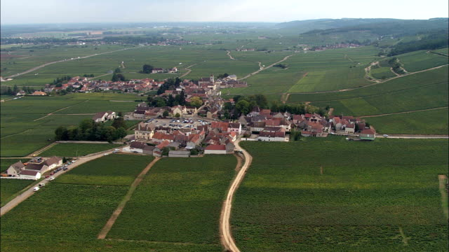 Morey-Saint-Denis And Sorting Grapes  - Aerial View - Bourgogne, Cote d'Or, Arrondissement de Dijon, France