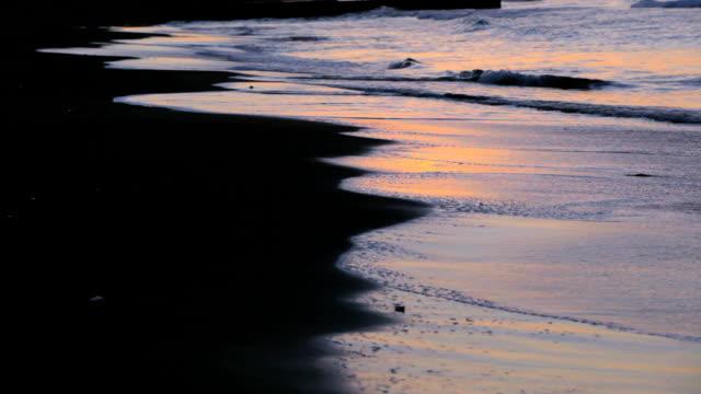 vídeos y material grabado en eventos de stock de mañana la playa - plusphoto
