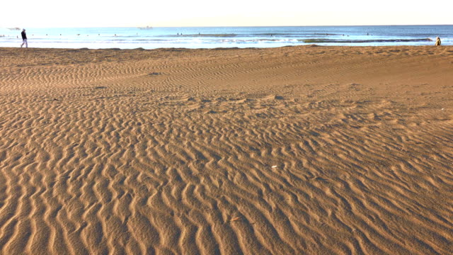 morning beach - walk - plusphoto stock videos & royalty-free footage