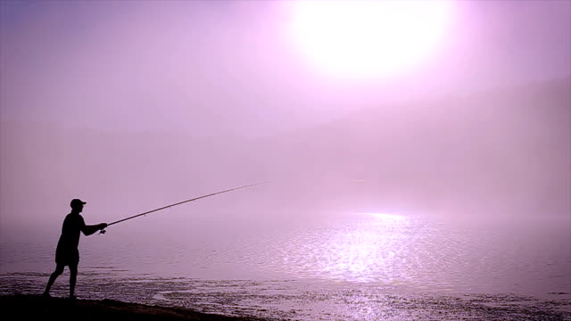 morning fishing - fishing rod stock videos & royalty-free footage