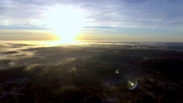 Morgon dimma antenn