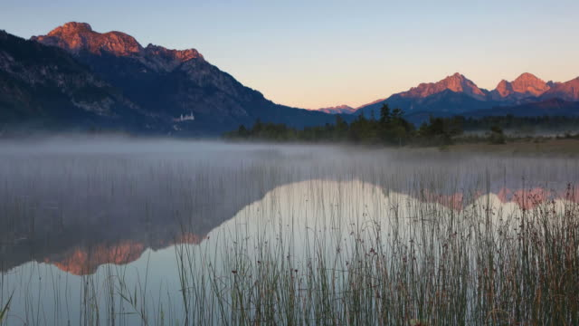 morning fog at lake bannwaldsee, bavaria, germany - pastel stock videos & royalty-free footage