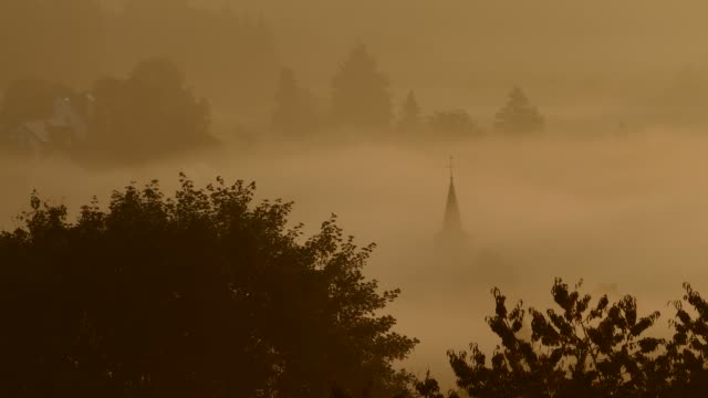 Morning fog at Schalkenmehren, Vulkaneifel, Eifel, Rhineland-Palatinate, Germany, Europe