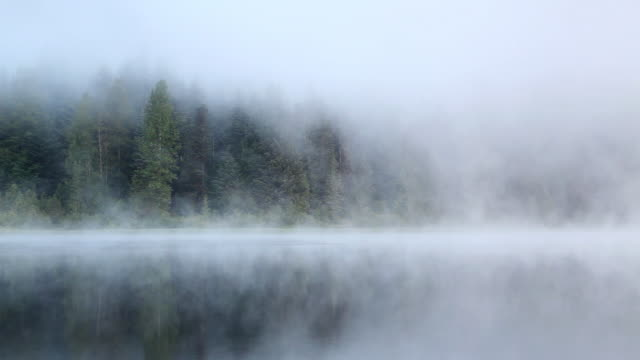 HD morning fog on lake
