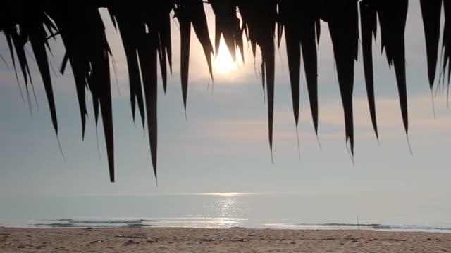 vídeos y material grabado en eventos de stock de mañana fresca en la playa - sobre
