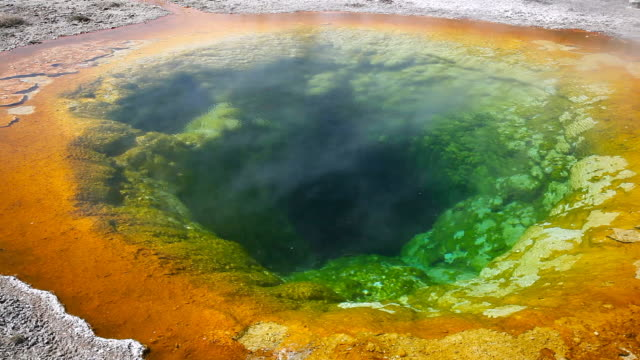 ms morning glory pool at upper geyser basin in yellowstone national park / wyoming, united states - geyser stock videos and b-roll footage